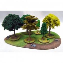 Duży las Premium