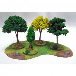 Mały las Premium